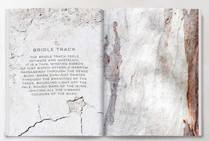 bridle track 2